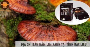 Địa chỉ bán nấm lim xanh uy tín tại tỉnh Bạc Liêu